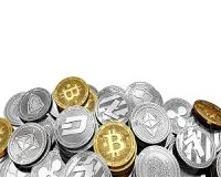 Gold, Bitcoin, hedgehog trading… What's it all about?