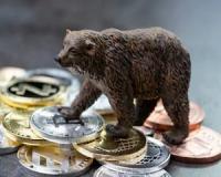 """Bargain hunting in """"bear"""" territory"""