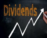 This is one of the JSEs ultimate dividend shares