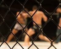 Betting on Mixed Martial Arts - Part 1: A beginner's guide
