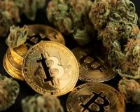 Q&A: New opportunities to trade Bitcoin and Cannabis
