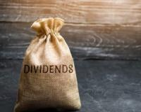 "Own ""Dividend Dominators"" for consistent income every year!"