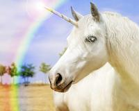"""How """"unicorns"""" are the next """"tulip bubble crisis"""" and how you can avoid them"""